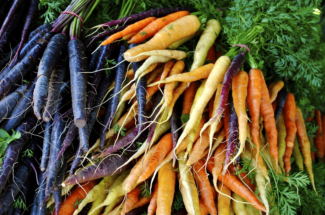 carrots  eating healthy
